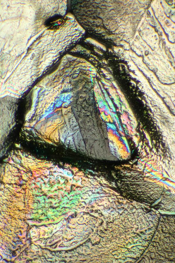 Mousserande kristaller av Cane Sugar arkivfoto
