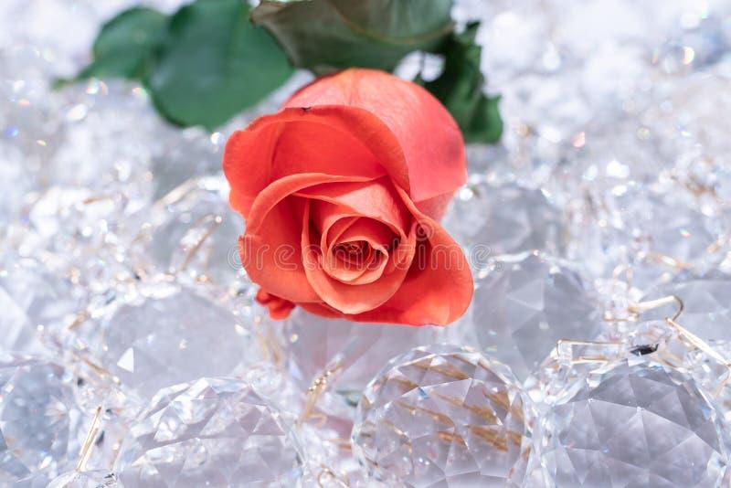 Mousserande kristaller med den röda rosen på dem royaltyfri bild