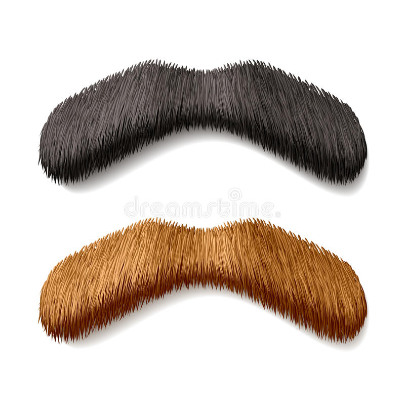 Moustaches fausses illustration stock