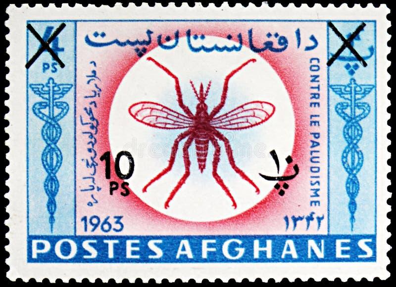 Moustique d'anophèles (PS d'anophèles ), éradication de serie de malaria, vers 1964 photographie stock libre de droits
