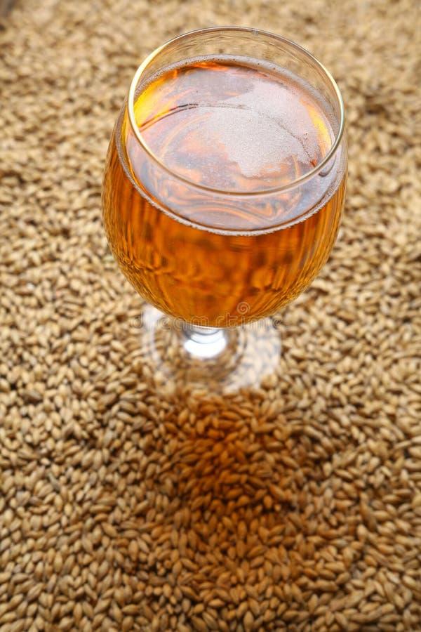 Mout en bier royalty-vrije stock foto