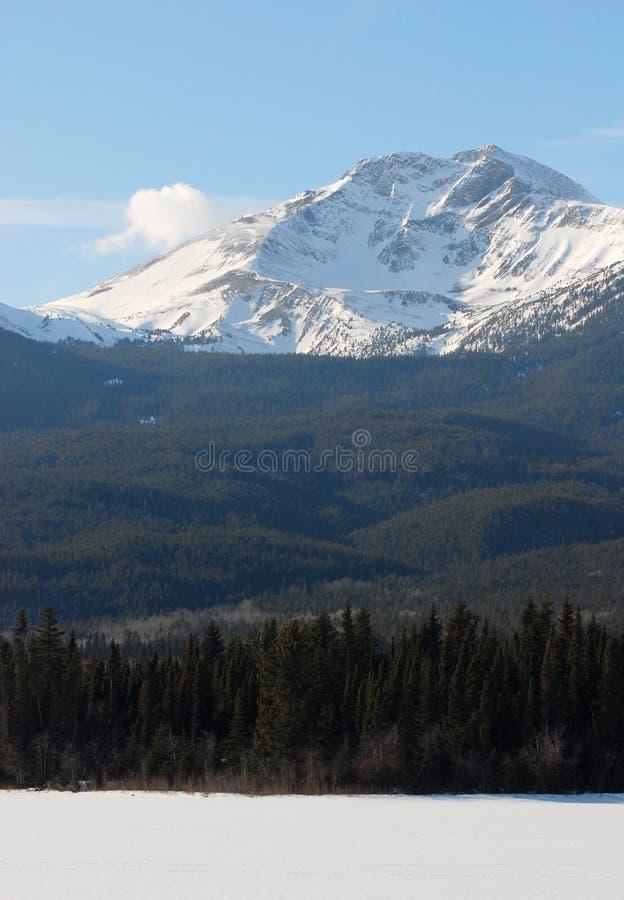 Moutain em Montanhas Rochosas fotografia de stock