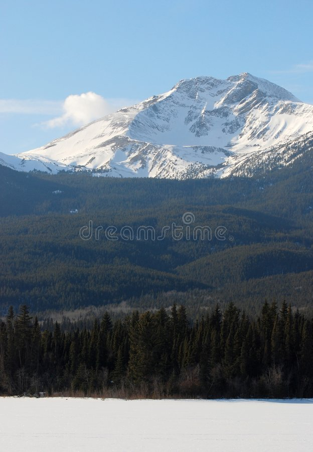 Moutain in Rockies stock fotografie