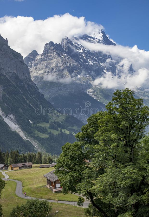 Moutainbiking in Grindelwald, Zwitserland stock foto