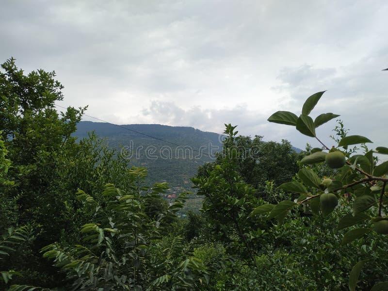 Moutains、植物和云彩在天空 免版税图库摄影