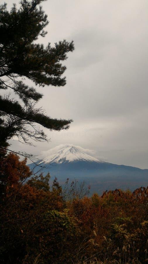 Moutan Fuji obrazy stock