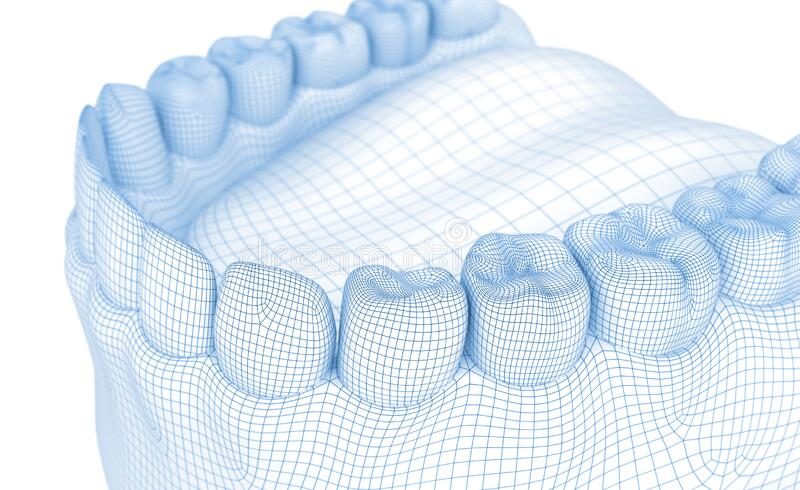 Mouth gum and teeth. Wire 3d model. Illustration royalty free illustration