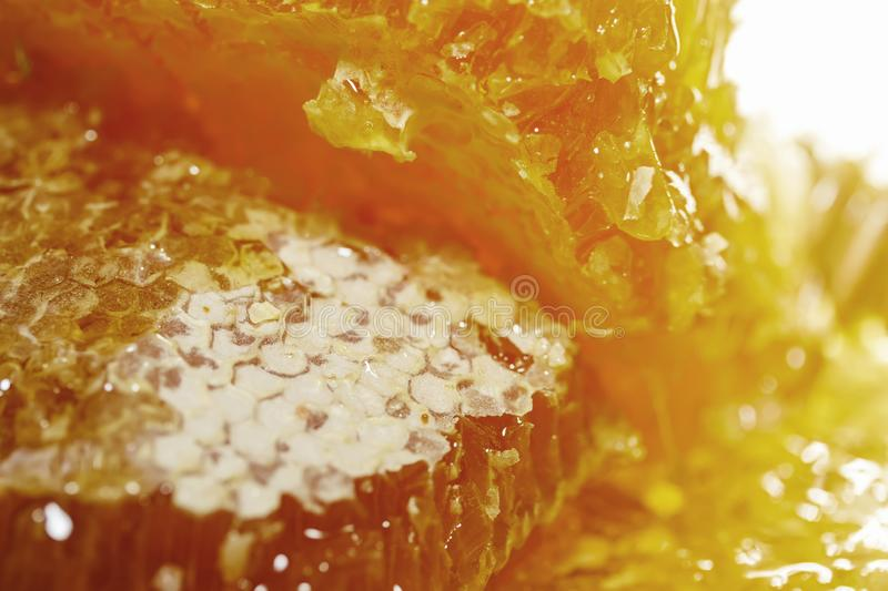 Mouthwatering  delicious background with chunks of Golden honeycomb covered in wax and dripping drops of sticky honey glow in. Mouthwatering sweet delicious stock photo