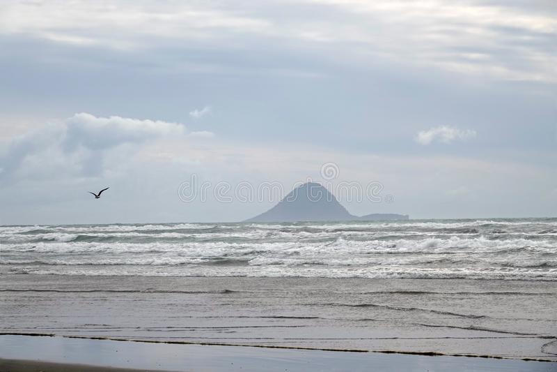 Moutohora或惠尔岛从Ohope海滩在华卡塔尼,新西兰 库存图片