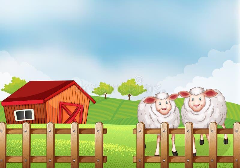 Moutons à l'intérieur de la barrière en bois avec une grange illustration stock