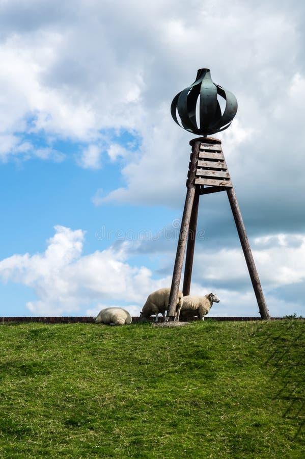 Moutons, digue, agneaux, la Mer du Nord images stock