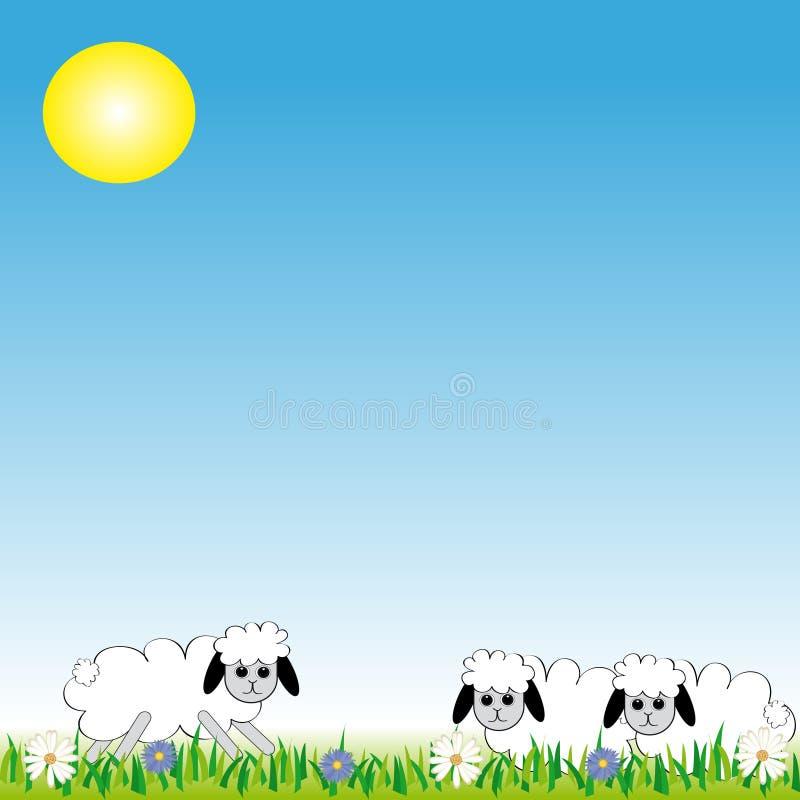 Moutons sur le pré illustration de vecteur
