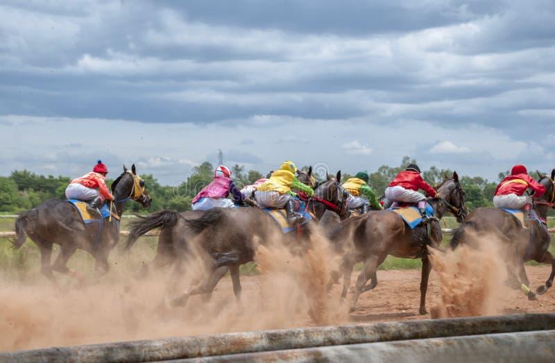 Mouvement de course de cheval photo stock