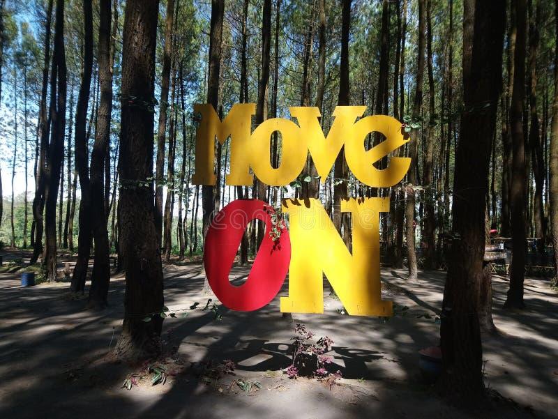 Mouvement sur la lettre dans la forêt de pin photographie stock libre de droits