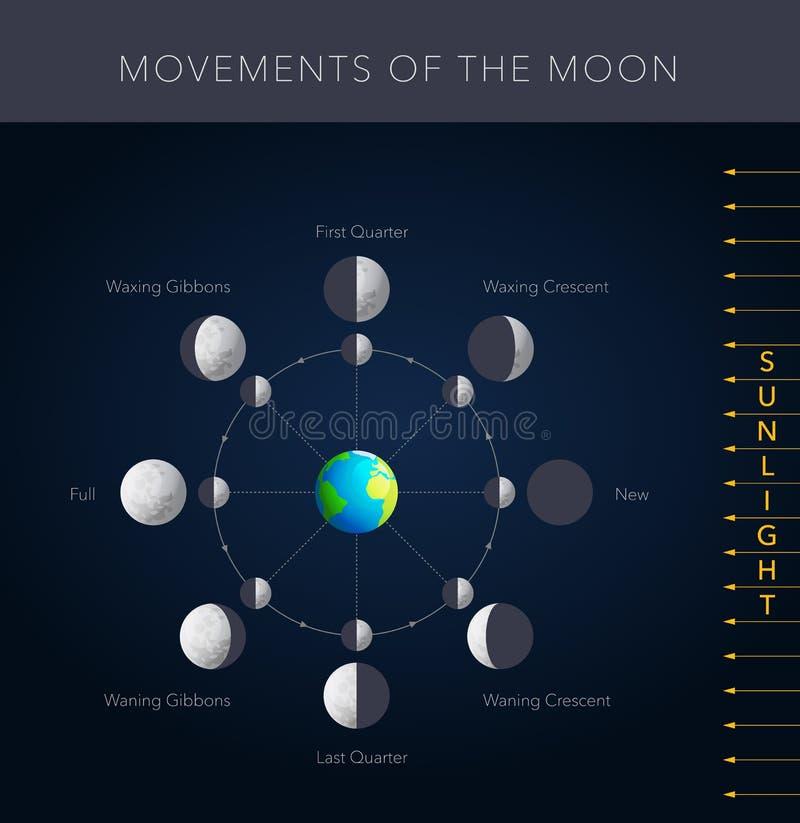 Mouvements du vecteur de lune illustration stock