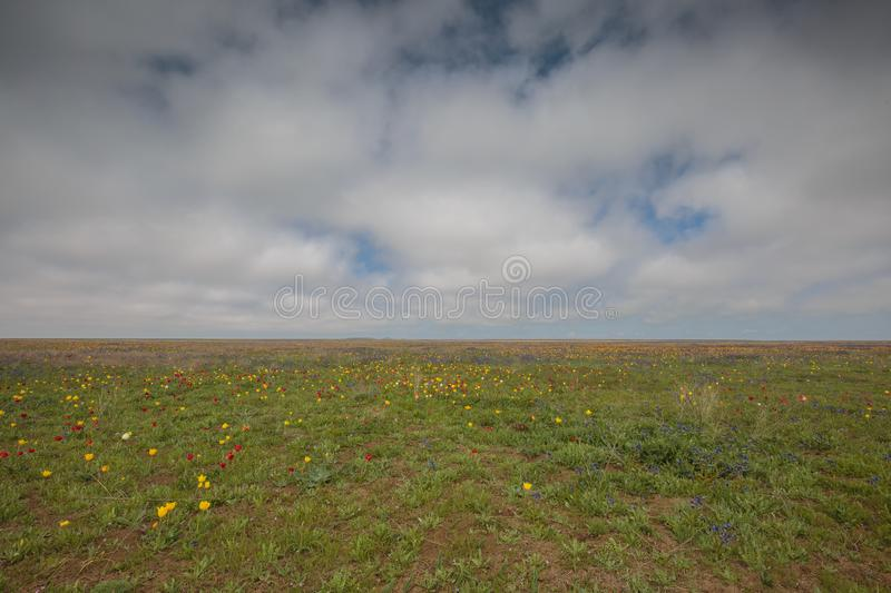 The movement of clouds in the spring in the steppe part of the C. Russia. The movement of clouds in the spring in the steppe part of the Crimea peninsula at Cape stock photo