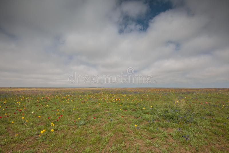 The movement of clouds in the spring in the steppe part of the C. Russia. The movement of clouds in the spring in the steppe part of the Crimea peninsula at Cape royalty free stock photos