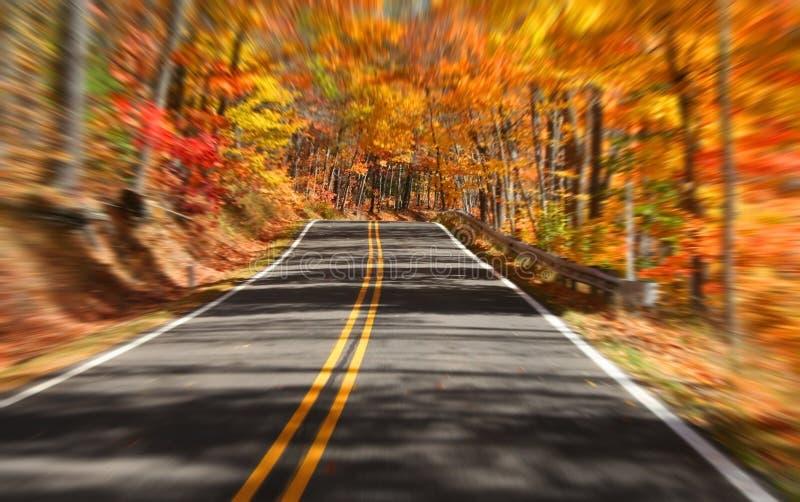 Movimentação cénico do outono fotos de stock