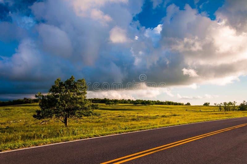 Movimentação da skyline e árvore em prados grandes, parque nacional de Shenandoah fotografia de stock