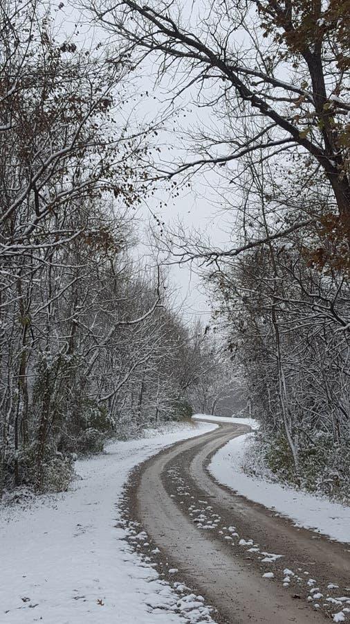 Movimentação do inverno fotografia de stock royalty free