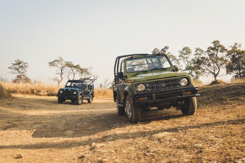 Movimentação do jogo do safari Os veículos do safari carro da perseguição na queda na estrada carros sem um telhado foto de stock