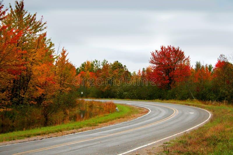 Movimentação do outono fotografia de stock royalty free