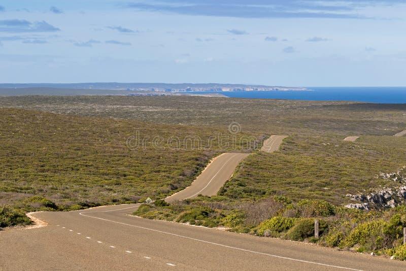 Movimentação do pugilista, estrada ondulada ventosa na ilha do canguru, Austra sul imagem de stock royalty free