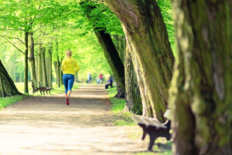 Movimentar-se de corrida do corredor da mulher no parque e em madeiras verdes do verão imagem de stock