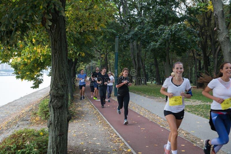 Movimentar-se no parque Manhã que movimenta-se no parque As competições e a maratona na aptidão e na saúde de Budapest foto de stock royalty free