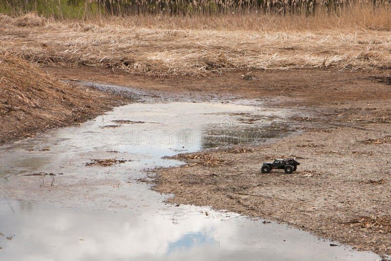 Movimenti dei martelli del gemello di Vaterra del crowler dell'automobile di RC attraverso la palude e l'erba asciutta immagini stock