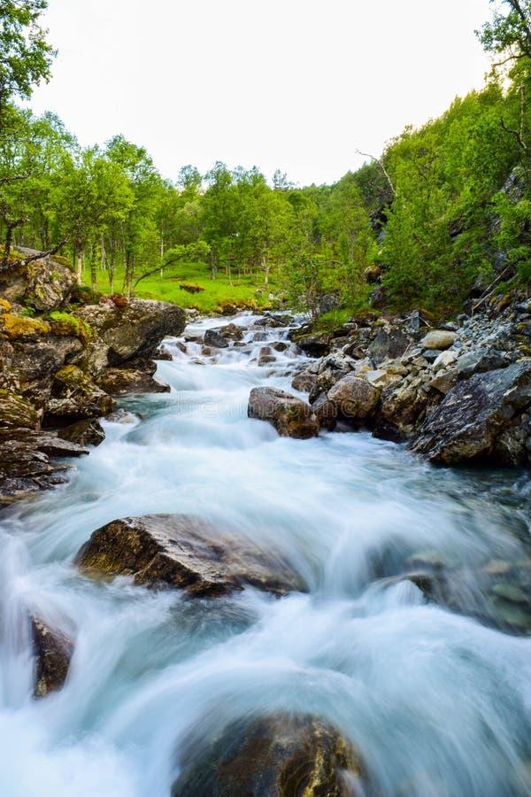 Movimenti sfocati acqua del fiume Fiume  lungo le montagne di Aurlandsfjellet in Norvegia immagine stock libera da diritti