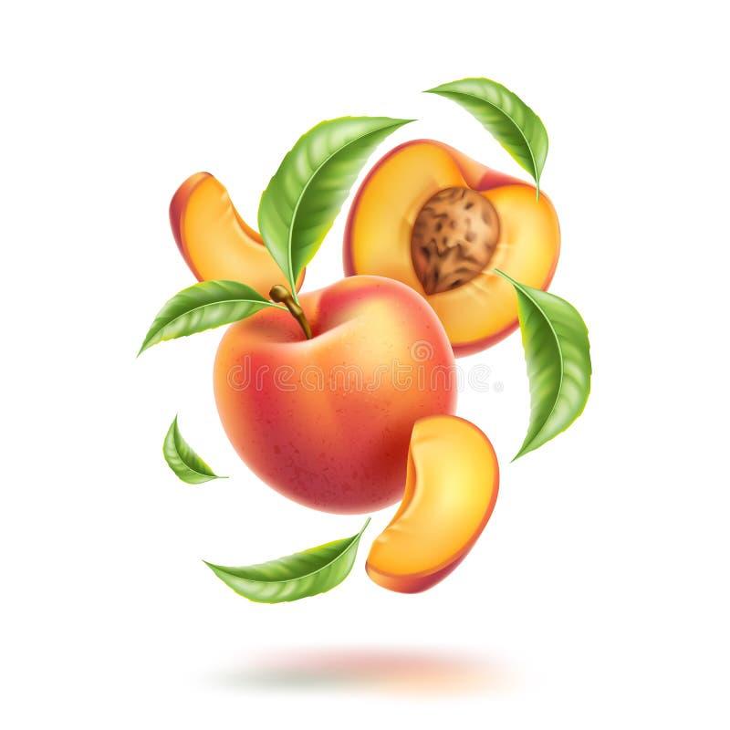 Movimento do redemoinho da fatia da folha da nectarina do pêssego do vetor ilustração do vetor