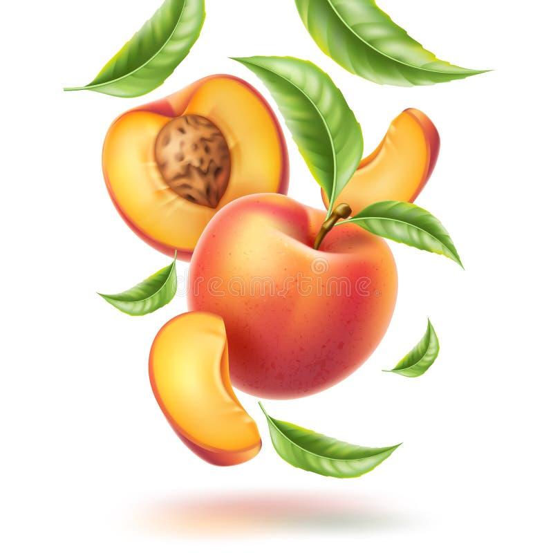 Movimento do redemoinho da fatia da folha da nectarina do pêssego do vetor ilustração stock