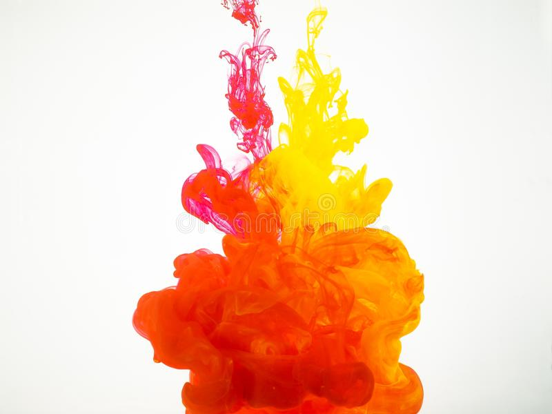 Movimiento abstracto de colores de acrílico en agua Chapoteo de la tinta colorida aislado en el fondo blanco Pinte la explosión imagen de archivo libre de regalías