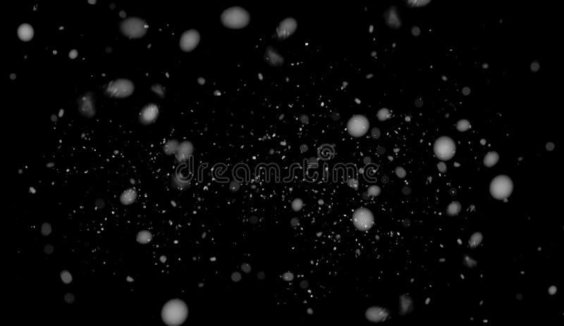 Movimiento del helada de la nieve blanca que baja, aislado en fondo negro Elemento de la textura del diseño ilustración del vector