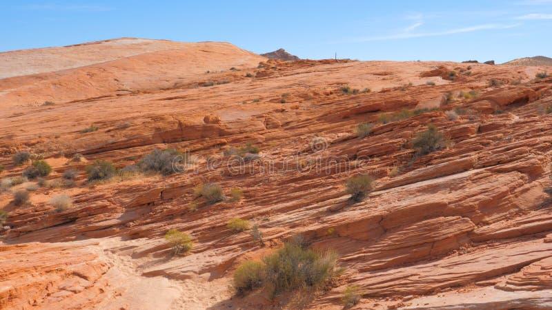 Movimiento en el barranco rojo de la roca del área de la reserva nacional, Nevada State In Mojave Desert imágenes de archivo libres de regalías