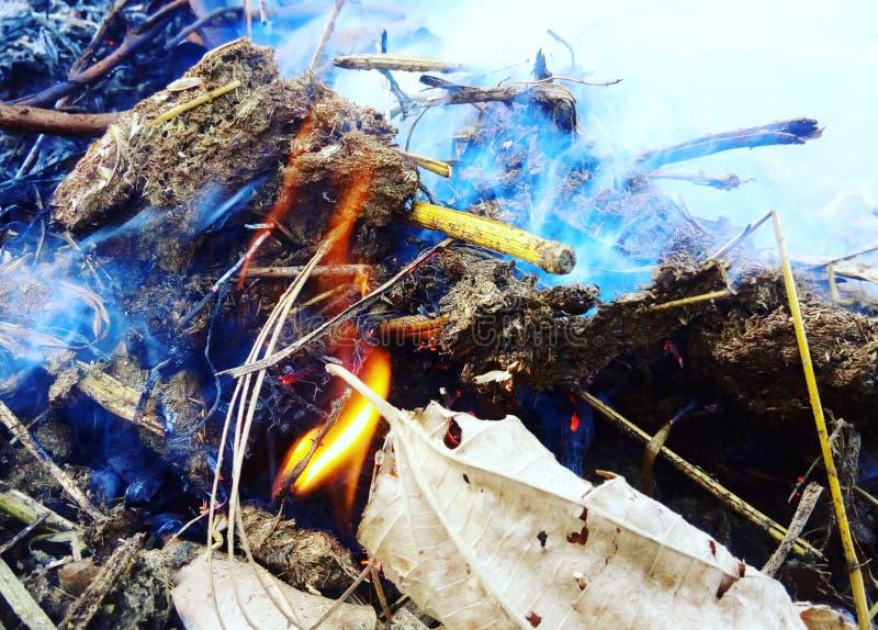 Movimientos del fuego fotografía de archivo libre de regalías