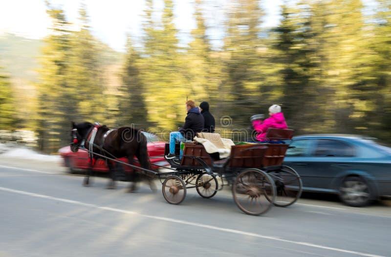 Moving экипаж лошади стоковое изображение