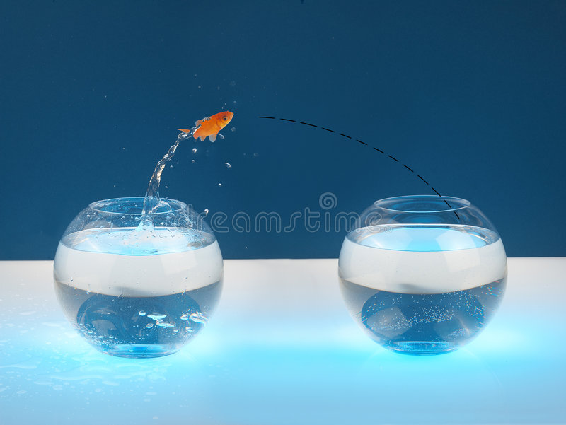Download Moving stock photo. Image of fishing, glass, leap, reflection - 962412
