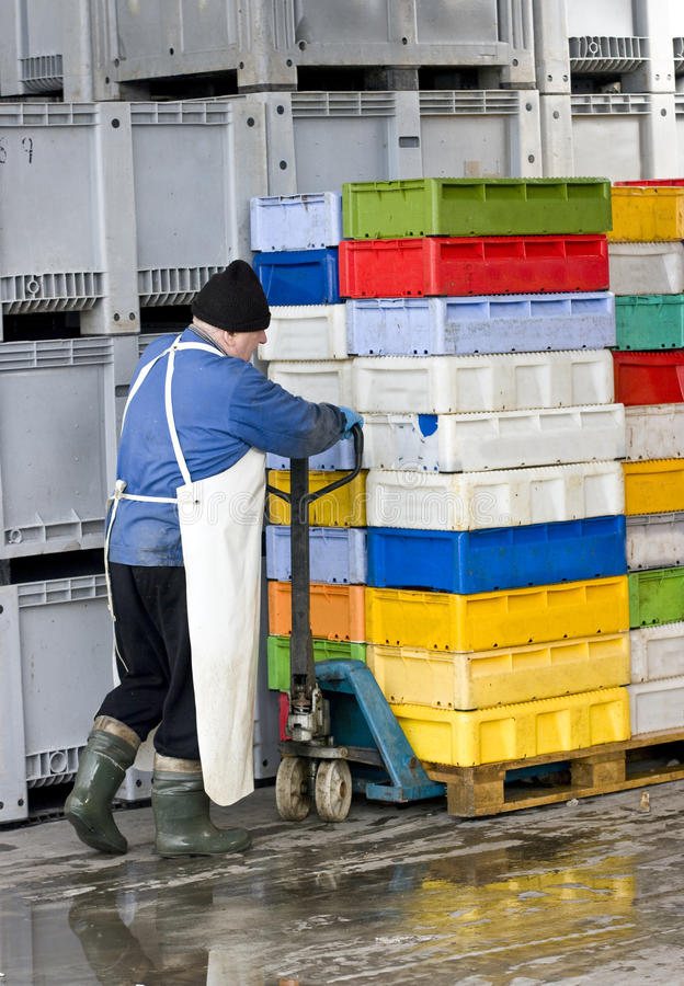 Moving boxes in cold store stock photo