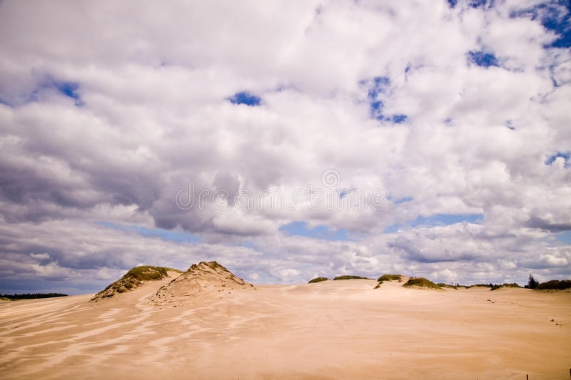 Download Moving Dunes At The Baltic Sea Stock Photo - Image: 20793582
