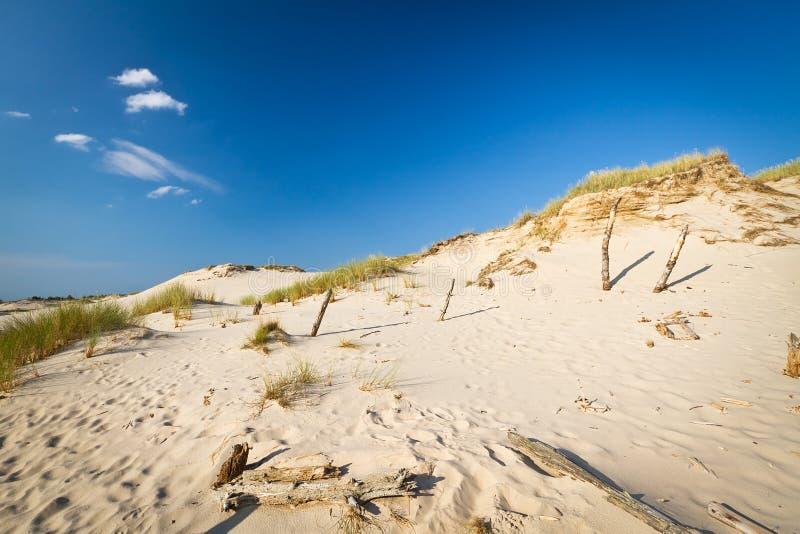 Moving dunes in Leba, Poland stock photography