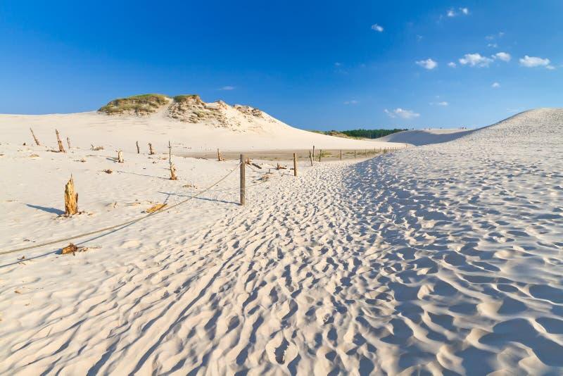 Moving dunes near Baltic Sea in Leba royalty free stock photo