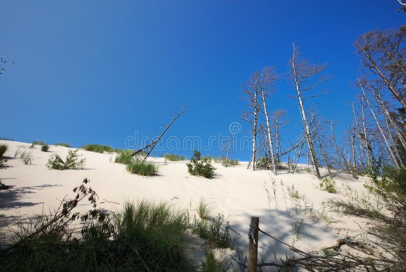 Moving Dunes in Slowinski National Park Poland stock photo