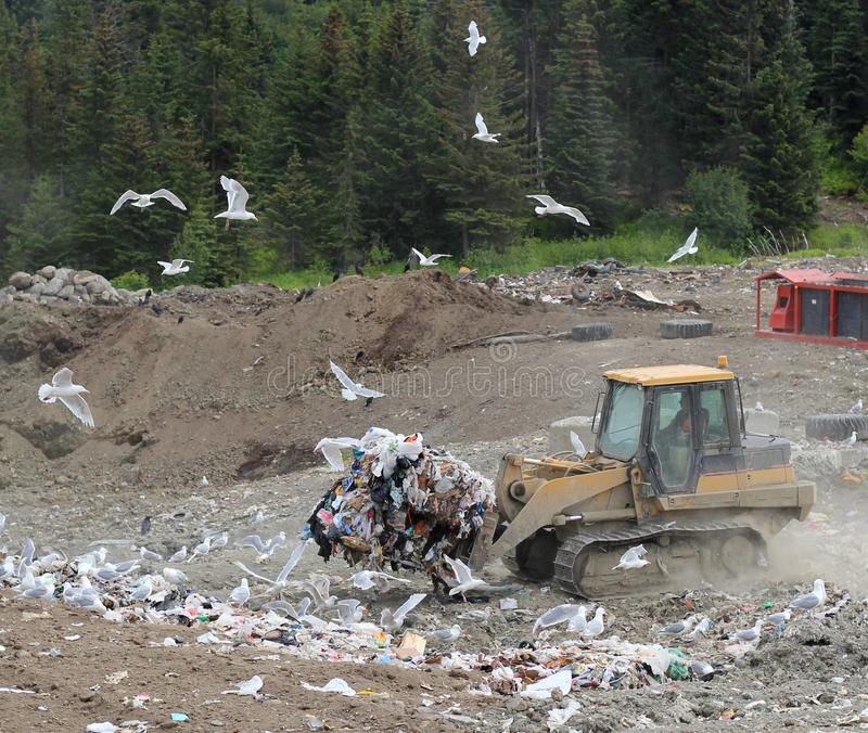 Moving trash at the dump stock photography