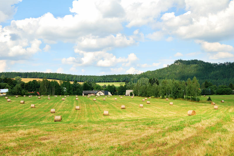 Mowed farm field with bales of hay royalty free stock photos