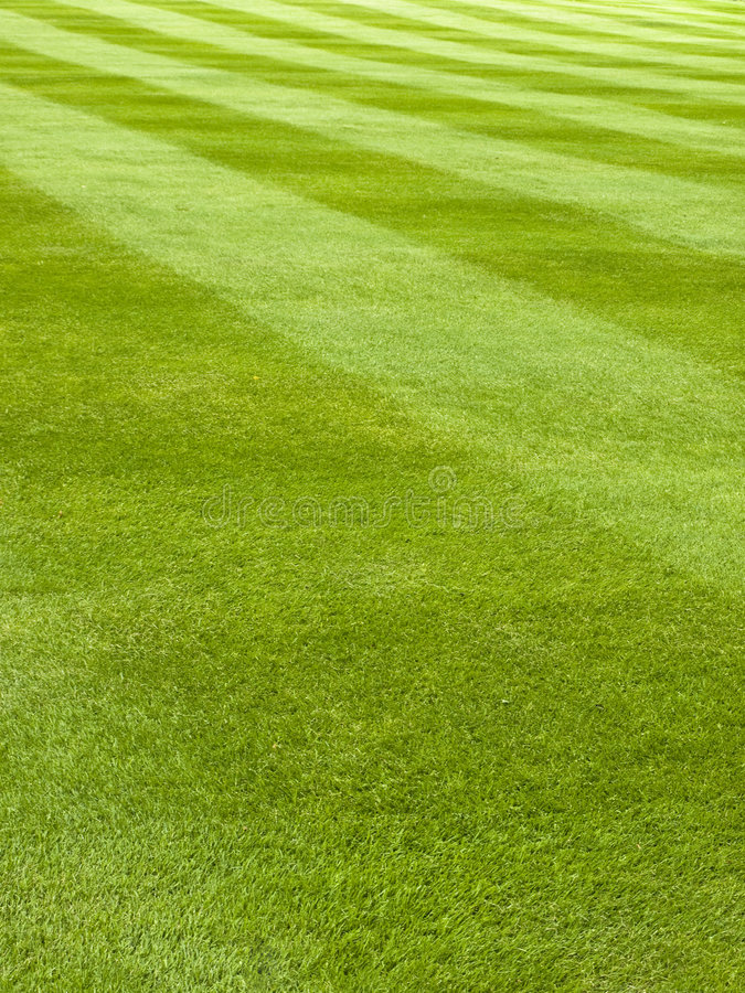 Mowed grass pattern. Large lawn of a grass mowed in stripe pattern royalty free stock photography