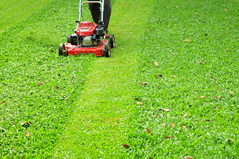 Mowed lawn mower royalty free stock images