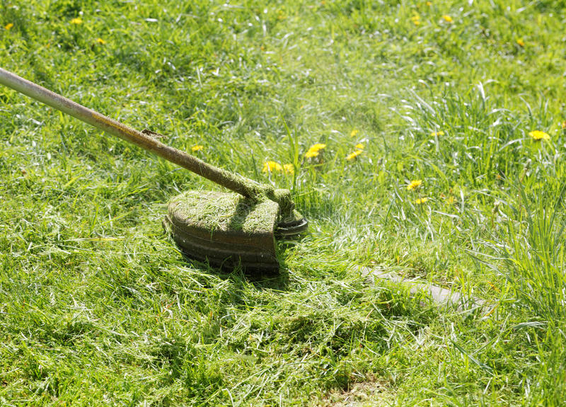 Mower close-up mowing grass stock photography