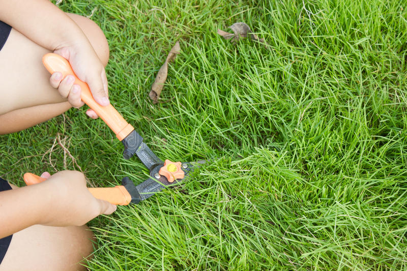 Mowing. royalty free stock photos